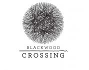 Angespielt: Blackwood Crossing (gamescom 2016)