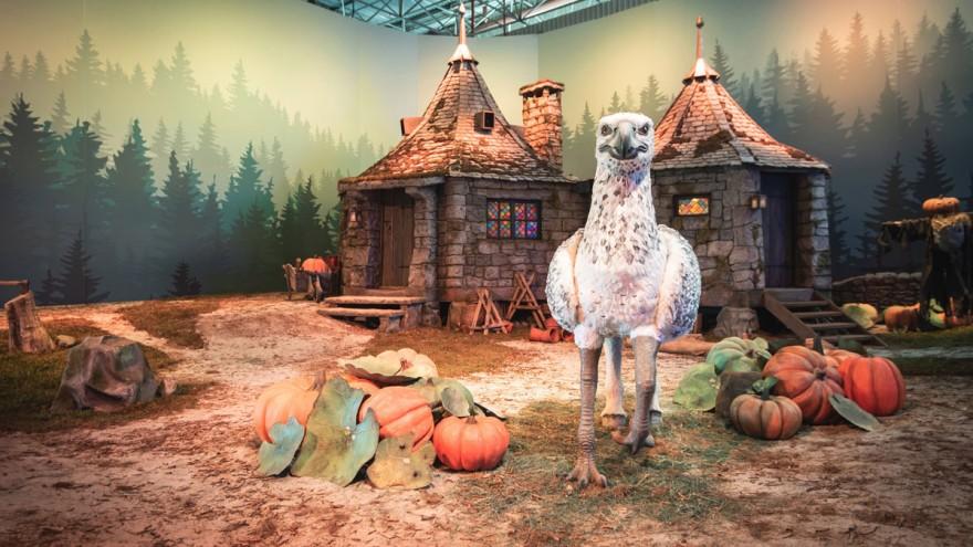 Hagrids Hütte zusammen mit Seidenschnabel