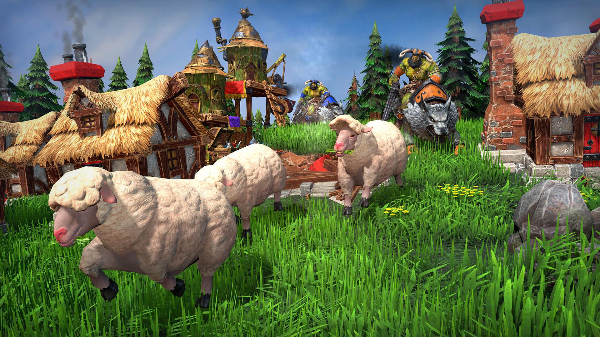 Pantens Schafe