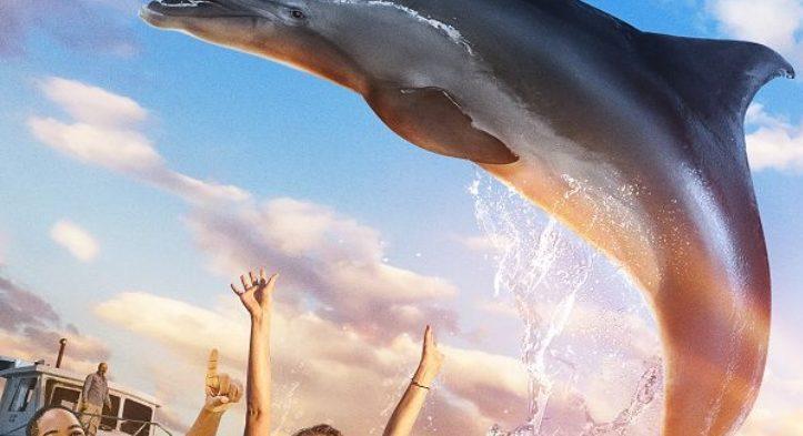 Die Insel der Delfine